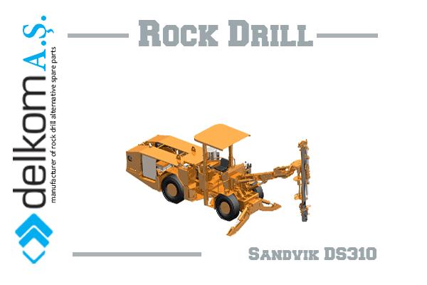 DS310