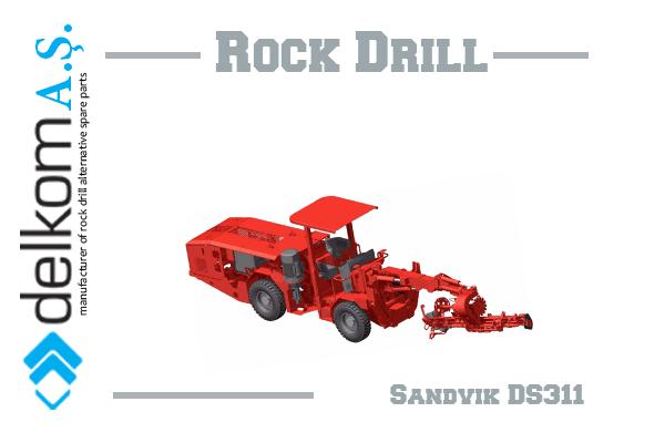 DS311