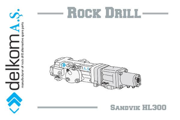 DS410-C-HL300