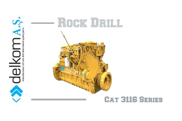 cat-3116-series